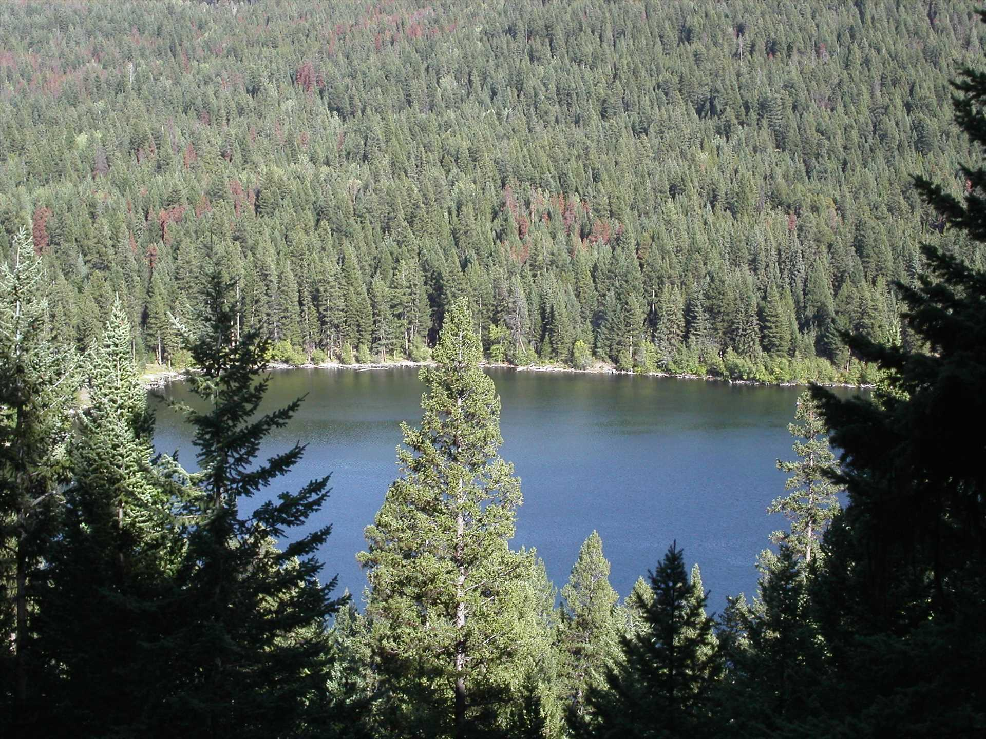 Natural Lakes & Forests